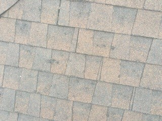 Hail Damaged Roof in Plano Texas
